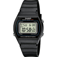 Часы CASIO Collection W-202-1A